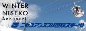 冬のニセコアンヌプリ国際スキー場
