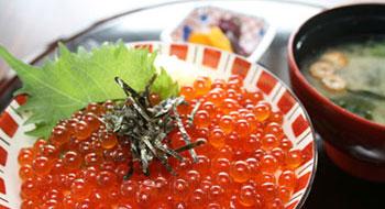 ミニヒレカツ丼セット(ざるうどん付き)